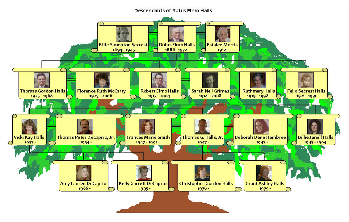 A Picture Of Family Tree Impremedianet